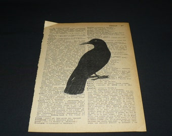 Black Crow Raven Bird Dictionary Art Print Home Decor Book Page Art Gallery Wall