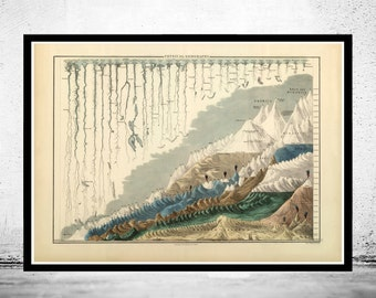 Comparative Mountains and Rivers 1854