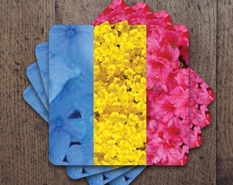 Pansexual flag colors in flowers Coaster Set