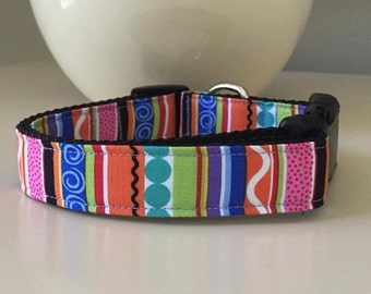 Dog Color / Whimsical Colorful Design
