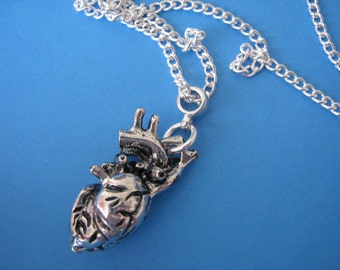 Anatomical Heart Necklace Heart Charm Pendant Medical Biology Gothic
