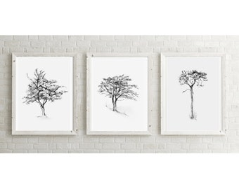 Set of 3 giclee art prints of pencil drawings of Trees - Zen drawing Tree drawing - Home decor wall decor - nature Sketch - Zen drawing book