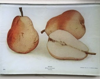 "Decoupage Glass Tray ""Pears"""