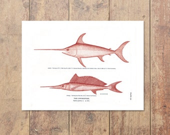Swordfish Art in Red- Fishing Print Beach Decor Ocean Home Decor Gifts For Dad Nautical Print Ocean Wall Decor Nautical Decor Father's Day