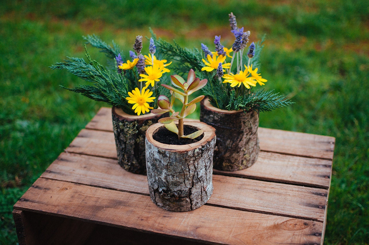 natural wood log planter pots by jaccobmckay on etsy