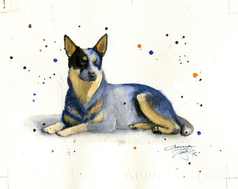 Blue Heeler Watercolor