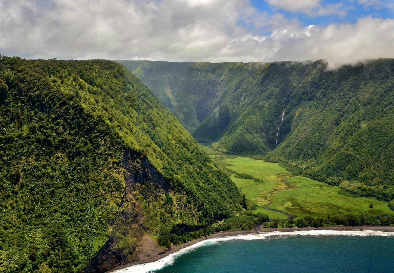 Rainforest On The Big Island: Waterfall Valley Kona Hawaii Big Island Lush Rain Forest