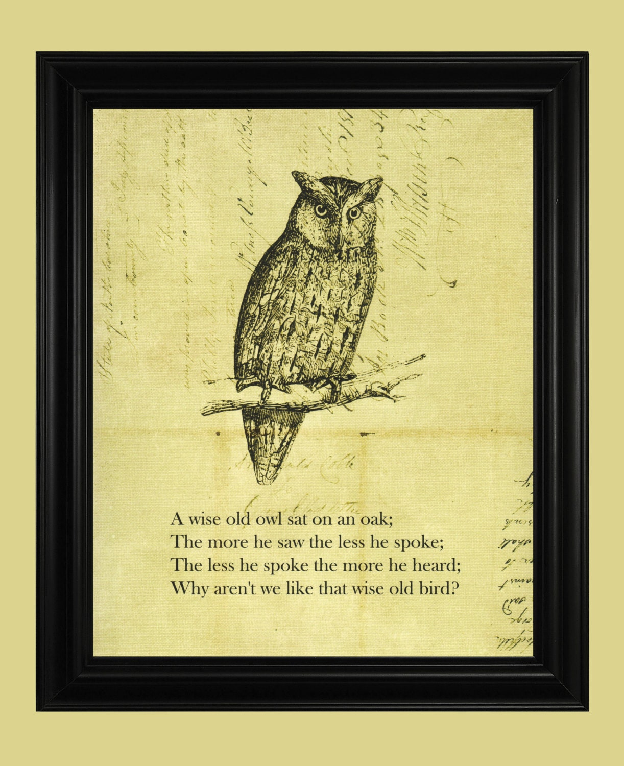 Vintage Owl Illustration Wise Old Owl Drawing Hoot Owl Art