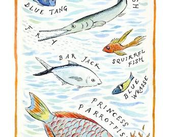 Caribbean Reef Fish, Archival Art Print