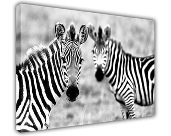 "Zebra In The Wild Framed Canvas Pictures Wall Art Prints Home Decoration Photos Nature Images Posters Size: 30"" X 20"" (76CM X 50CM)"