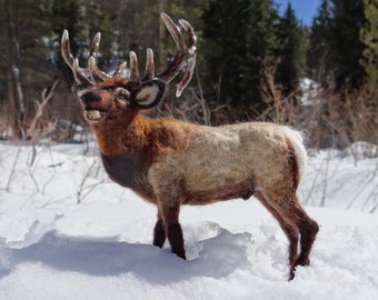 Bull Elk, Wapiti Needle felted Wool Animal  by Carol Rossi Created Just For You!