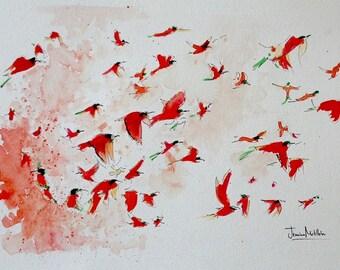 Carmine Bee-Eaters in Flight