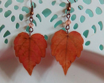 REAL LEAFJewelry Leaves Earrings Hand Crafted