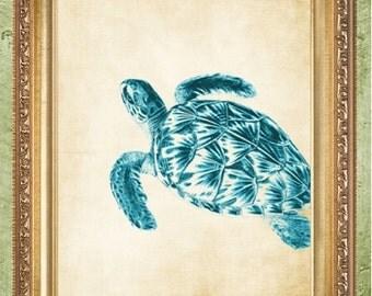 Turtle Prints Nautical Art Prints Coastal Art Prints Beach Print Bathroom Art