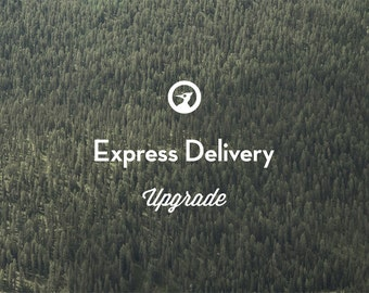 Express FedEx Delivery Upgrade to the USA