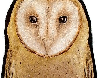 Owl stained glass fragment, kilnfired, stained glass owl motif, owl suncatcher, hibou vitraux, owl glasspainting, owl, glasspainting, eule