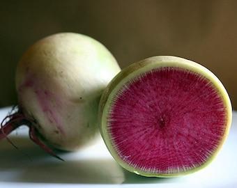 Radish - Watermelon (100% Heirloom/Non-Hybrid/Non-GMO)
