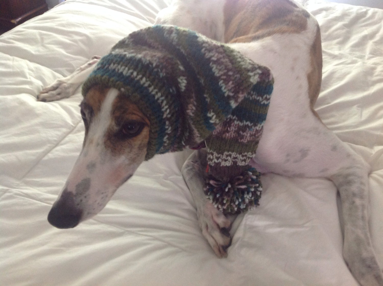 Pointed hat with snood for greyhound fair isle pattern capri breeze bankloansurffo Images