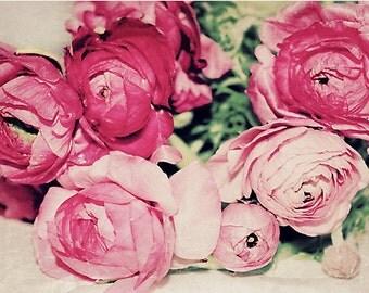 Pink Ranunculus fine art print, Paris Decor,  Pastel Photograph, Floral photography, pink, green, flowers, Nature Photo