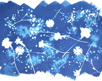 Original Cyanotype - Flowers - Blueprint, Sunprint, Photogram, Traditional Photograpy Print, Wall Decor - by MABartStudio