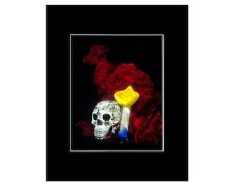 Surreal Photography / Skull Wall Art - Strange Art, Surrealism
