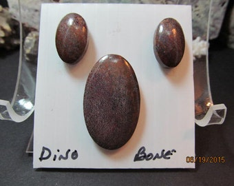 Dino-Bone Cabochons (Set of 3)