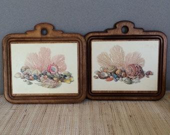Vintage seashell art | shell art | shell plaque | seashell plaque | coastal cottage decor | decoupage plaque