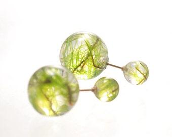 Real Moss Earrings [W] Globe Jewelry by Resin, 14Kgf Earrings