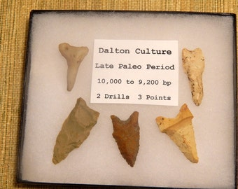 Sale 23% Off Genuine Set of 5 Dalton Indian Arrowheads Native American Artifact for Education Collection Display