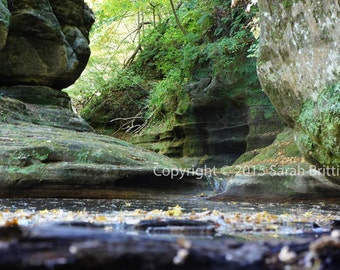River's Edge - Starved Rock - Landscape - River - Nature Photography - Fine Art Photography