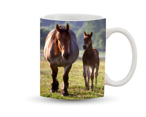 Mother Horse And Foal Mother Horse Foal Mug 11 oz