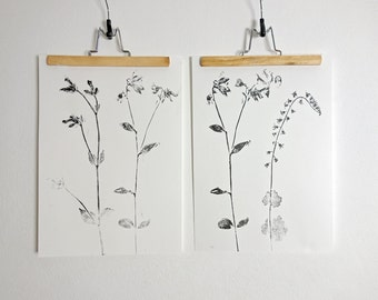 Handmade poster, original print, monoprint of flowers from my garden, Black and white, 30 x 42 cm.