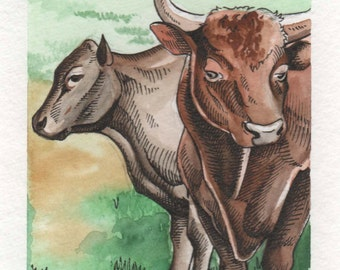 Bull and Cow | 4x6 Original Watercolor