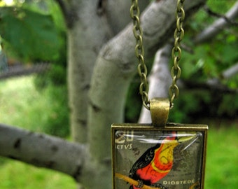Ecuador Necklace, Tropical Bird, Postage Stamp Jewelry, Postmarked, Postage Stamp Art, Travel Inspired Necklace, Square Pendant