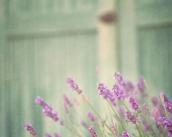 Cottage Chic Decor, Lavender Photography, Purple Botanical Print, Romantic Art, Garden Flowers Photo, Green Floral, Large Wall Art
