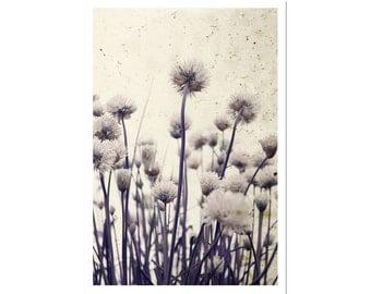 Art Photography, Botanical Print, Flower Photograph, Floral Artwork, Purple Grey Nursery, Home Decor