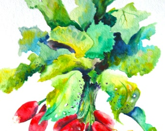 "Watercolor Painting, Original Still Life, Radishes, 11""x15"""