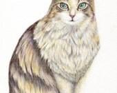 cat art print-An Elegant With Beautiful Fur-cat portrait pet, cat lover gift kid room nursery decor art wall hanging (167)