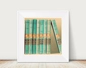 Fine Art Print The Hardy Boys Vintage Book Nursery Decor Robins Egg Blue Cream Black Mid Century Retro Modern Boys Room Wholesale