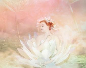Pond Lily by Susan Schroder -  Mythic Fantasy Fairy art print