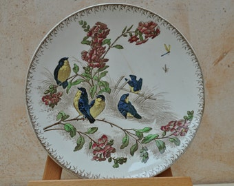 Antique French Dessert Plate - Printemps - Coloured Birds - U & C Sarreguemines - 1900