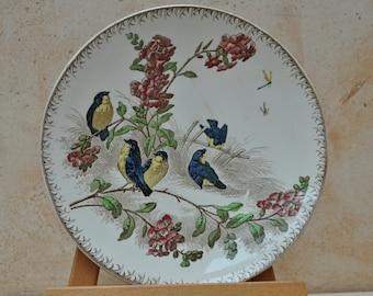 Antique French Dessert Plate - Printemps - Coloured Birds - U & C Sarreguemines - 1900