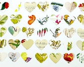 3 inch Paper Hearts, 3 inch Floral hearts, Music hearts, Crafting Supplies, Scrap-booking Supplies, Bag of Hearts