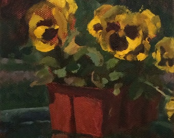 Yellow Pansey Study