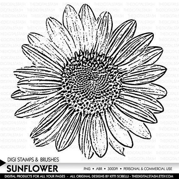Sunflower - Digital Stamp and Brush - INSTANT DOWNLOAD - for Cards, Scrapbooking, Journaling, Invites, Collage, Crafts and More
