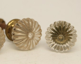 Set of two daisy glass knobs