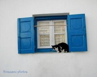 Blue summer decoration, blue white travel photo , Βlue window with a cat,  home wall art print, summer decor Greece Mykonos