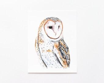 Barn Owl 8x10 Art Print - Owl Woodland Giclée Print