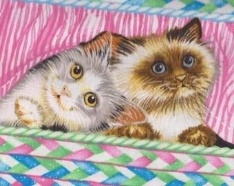 PEEK A BOO Kitten Stripe ~ Retired Cat Fabric FQ