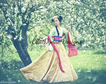 LIMITED EDITION Mulan Costume Disney-Inspired Hanfu Style Dress